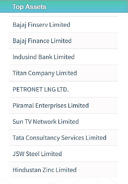 Top Holdings - Best of Nifty 100